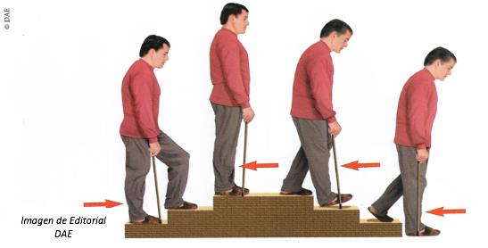 Subir y bajar escaleras. Guía práctica para pacientes con Prótesis Total de Cadera IMTRA
